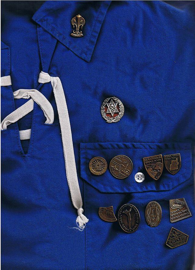סמלי טיולים וסמינרים נעוצים בכיס החולצה השומרית, בעוד שסמל הבוגרים נעוץ שתי אצבעות מעליו, וסיכת ההדרכה בדש הצווארון
