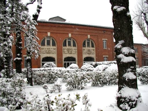 האוניברסיטה של טולוז