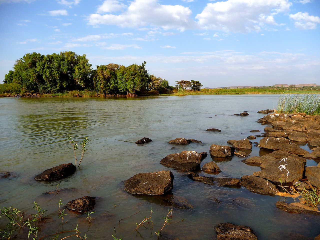 ראשיתו של הנילוס הכחול באגם טאנה.